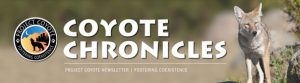 CoyoteCronicles