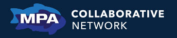 CollaborativeNetwork