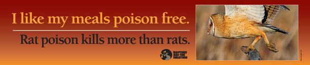 RaptorsAreSolution